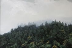 Landscape Paintings in Oil by Adam Hall. - -Personal Landscape Paintings in Oil by Adam Hall. Drawing Skills, Drawing Techniques, Drawing Guide, Life Drawing, Painting Videos, Painting Tips, Painting Pictures, Painting Fur, Spray Painting