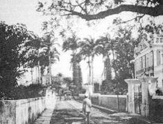 Rua Benfica - 1895  Imagens Antigas :: DIVULGA PERNAMBUCO - O Site