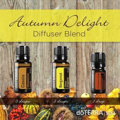 """dōTERRA Spa on Instagram: """"This blend is sweet and warm, and helps to bring the """"Autumn"""" feeling into your home."""" Bergamot Essential Oil Uses, Cassia Essential Oil, Fall Essential Oils, Cinnamon Bark Essential Oil, Essential Oil Diffuser Blends, Therapeutic Grade Essential Oils, Doterra Diffuser, Doterra Oils, Essential Oils"""