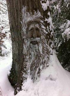 Old Man Winter in Morgantown, West Virginia by Paula Harris