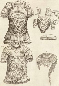 Anatomia del corpo humano... Rome, 1559 (https://pinterest.com/pin/287386019947532848). Juan Valverde de Amusco, anatomist, Gaspar Becerra?, artist. Valverde playfully shows the viscera dissected not just through skin, but through a suit of Roman armor. The free-floating body parts on the right are copied from Vesalius.
