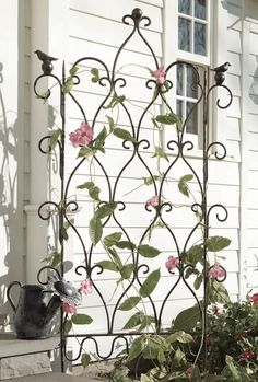 Ornamental trellis against painted fence or wall What a great look