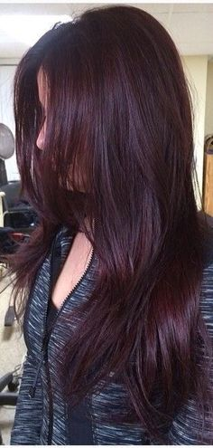 Ideas Hair Color Ideas For Brunettes Burgundy Red Haircuts hair 432134526744824966 Hair Color Shades, Hair Color Purple, Hair Color And Cut, Burgundy Colour, Red Burgundy, Red Colour, Dark Brown Purple Hair, Hair Colors, Pelo Color Borgoña