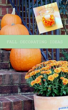 Bright Bold and Beautiful :  25 Easy Fall Decorating Ideas for you to try this season