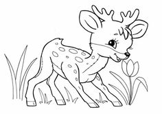 Coloring Pages Nature, Cute Coloring Pages, Coloring Pages For Kids, Coloring Books, Tier Puzzle, Arts And Crafts, Paper Crafts, Paper Quilling, Animal Drawings
