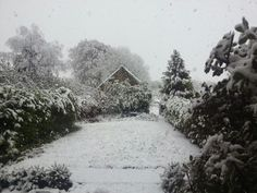 Snow in Somerset, England