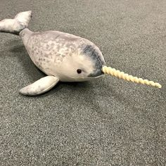 The unusual Narwhal is another new plush toy we will have in stock early 2018 from the large menagerie of creatures at Wild Republic. We really will have every animal imaginable soon #plushie #plushtoy #stuffedtoy #stuffedtoys #stuffedanimal #narwhal #toys #toyshop #toystore #wildrepublic