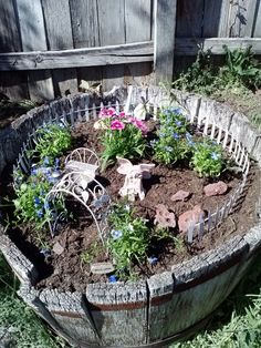 Savanna's fairy garden