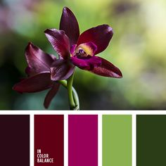 Sharing this beautiful colour palette www.mrp.uk.com #PackagingSpecialists