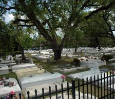 """The Coconut Grove Cemetary in Miami, Florida - This historical cemetary has been used since the early 20th century and it is the location where Michael Jackson's video """"Thriller"""" was filmed. People often report the phantom smell of a man's strong cologne, apparitions are seen roaming throughout the grounds."""