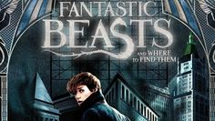 "Хороший блог о кино и музыке, а тк же путешествиях: Box-office Russia: ""Fantastic creatures"" resigned ..."