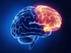 Ποιες λέξεις προκαλούν πόνο στον εγκέφαλο;