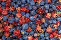 http://topwalls.net/wallpapers/2012/11/Berries-Food-Forest-Berries-485x728.jpg