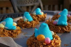 bird nest snacks