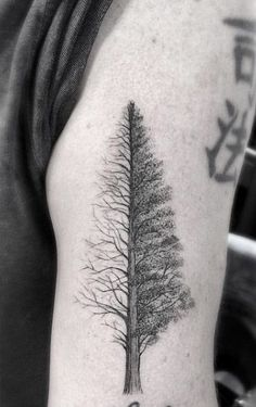 Half and Half Tree Tattoo by Doctor Woo