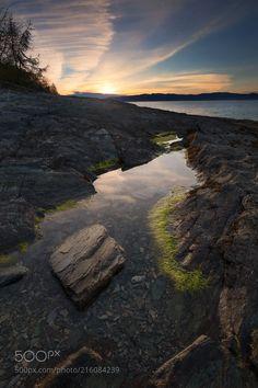 Creeper (Ramunas K Fishermang / Trondheim / Norway) #Canon EOS 5D Mark IV #landscape #photo #nature