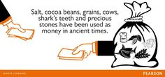 Learn interesting facts with us everyday.