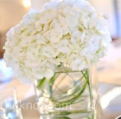 simple white hydrangea centerpiece with some swirled grass in the vase