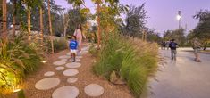 SLA Landscape Architecture, Landscape Design, Types Of Forests, Outdoor Landscaping, Outdoor Decor, Public Space Design, Urban Nature, Public Realm, Urban Park