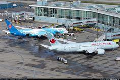 The 619 best Boeing 787 Dreamliner Aircraft images on Pinterest in 2018  Boeing 787 dreamliner