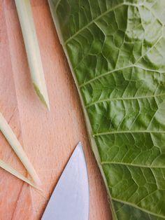 Liście chrzanu! Na co to komu!:) 3 sposoby na (z)chrzanienie czegoś Herbalism, Plant Leaves, Plants, Recipes, Recipies, Plant, Herbal Medicine, Planting, Planets