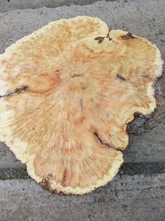 Wood Slab, Paris Street, Wooden Surfboard