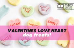 Friday Funny: 10 Hilarious Signs That Every Dog Owner Needs To See! - Ollie & Penny - ★ Musings of two spoilt Sausage Dogs! Heart Shaped Cookie Cutter, Blue Food Coloring, Very Clever, Friday Humor, Valentine Day Love, Hilarious, Funny, Dog Owners, Dog Treats