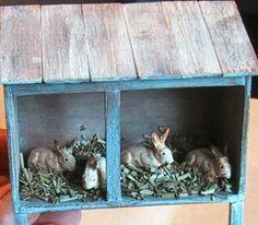 1000 images about rabbit hutches on pinterest rabbit for Super pet hutch