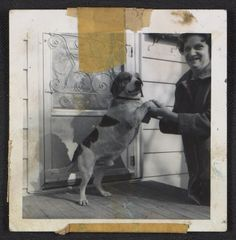 Citation: Unidentified woman with a beagle, 195-? / Honoré Desmond Sharrer, photographer. Honoré Sharrer papers, Archives of American Art, Smithsonian Institution.