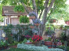 Backyard Garden Love Garden, Shade Garden, Dream Garden, Garden Pots, Backyard Projects, Garden Projects, Garden Ideas, Hanging Plants, Hanging Baskets