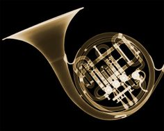 French Horn with x-ray art
