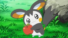 Emolga sweepstakes