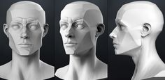Facial planes for male human. (Character Art) - Polycount Forum