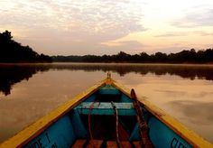 Navegando por el río Amazonas