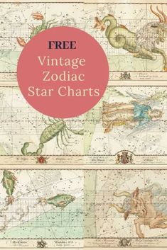 Aquarius Star Constellation, Astrological Symbols, Picture Boxes, Star Constellations, Winter Sky, Star Chart, 12 Signs, Photo Printing Services, Art Journal Pages