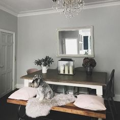We don't know what we love more...how @simply.weekend has styled our Carisbrooke table or her adorable dog!   #Regram via @barkerandstonehouse
