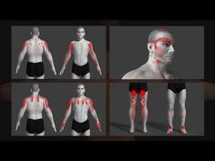 trigger point explained with animation - YouTube