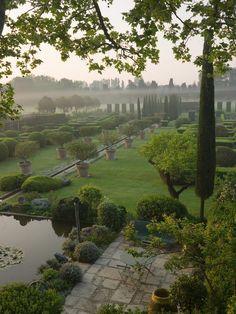 Brume du matin sur le jardin taillé
