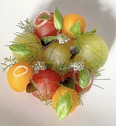 Fennel, Queen Anne, Cherry Tomatoes, Vines, Vegetables, Salads, Inspiration, Instagram, Biblical Inspiration
