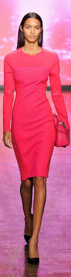 DKNY F/W 2013-2014 RTW    *would be perfect with yellow shoes & bag!