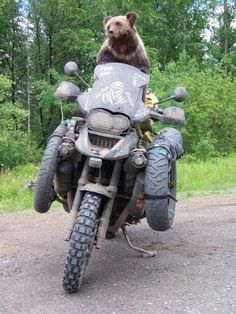 When it came to loaning his GS, Hans would normally refuse on general principle. However, on this occasion, Bear Grylls was quite insistent.