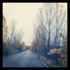 Camino de Calarberche