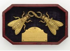 Napoleon's symbolic, bee-adorned coat clasp