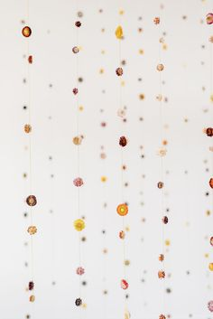 Covid Friendly Bridal Shower Citrus Libations Sunset Blooms Diy Wedding Favors, Wedding Vendors, Wedding Bouquets, Chic Bridal Showers, Disney Bridal Showers, Wedding Trends, Wedding Designs, Wedding Ideas, Bridal Shower Appetizers