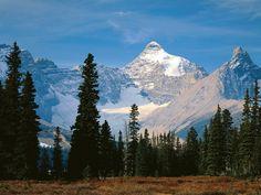 Mount Athabasca, Jasper Nat. Park, Alberta, Canada