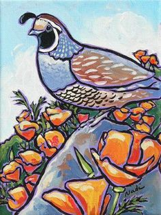 """35 quail and Poppies 3"" - Original Fine Art for Sale - © Nadi Spencer"