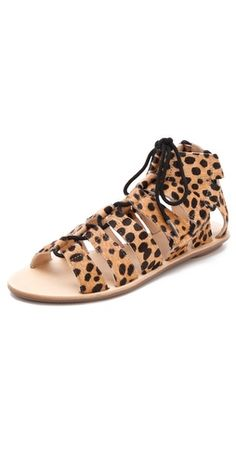 Ganbaroo loves Cheetah-print gladiators