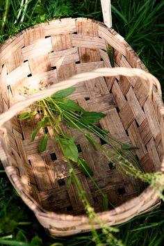 Villiyrtit omalta pihalta | Meillä kotona Firewood, Crafts, Woodburning, Manualidades, Handmade Crafts, Craft, Arts And Crafts, Artesanato, Handicraft