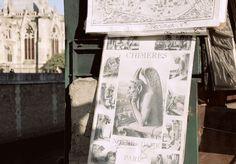 Vigilando Notre Dame