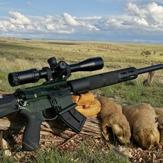 The F17-L with a couple of prairie dogs taken in Northern Arizona.